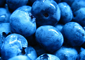 superalimentos_blueberries